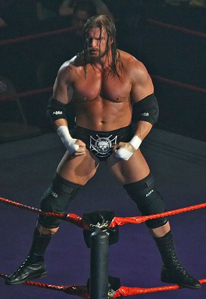 Triple H / Photo by: Jjron - Wikipedia.org