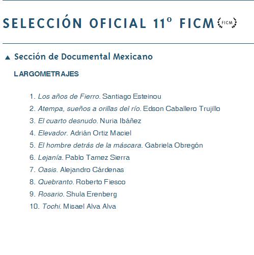 FICM13