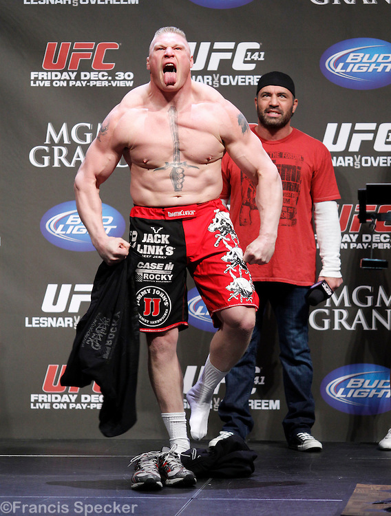 Brock Lesnar / mmafighting
